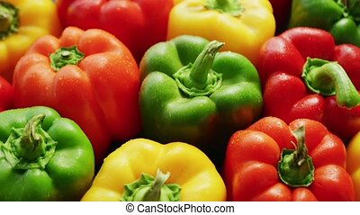 Bunch of bright bell peppers - From above of wet bell...