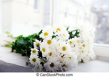 Bunch of camomile flowers on the window-sill