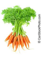 carrot - bunch of carrot