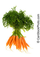 Bunch of carrots isolated on a white background