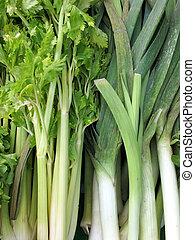 Bunch of celery sticks