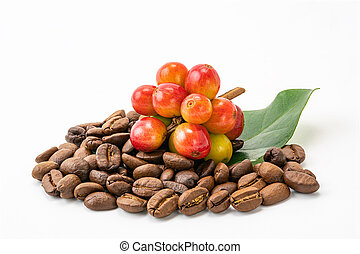 Bunch of coffee fruit with leaf and a pile of coffee beans on white background.