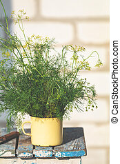 Bunch of dill in old yellow cup on vintage wooden table