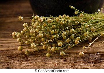 Bunch of flax plants which are bonded by natural cord