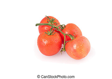 bunch of four red tomatoes on a white background