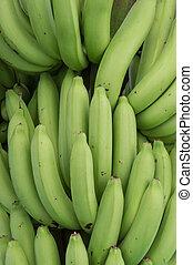 banana - Bunch of fresh banana.