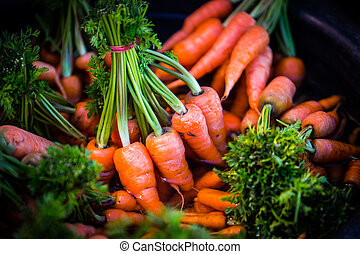 carrot - Bunch of fresh carrots with green leaves