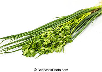 bunch of fresh cilantro and Spring onions