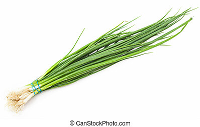 bunch of fresh cut green chives onion on white