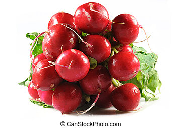Bunch of fresh garned radishes with leaves