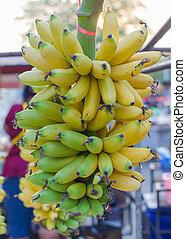 Bunch of fresh green bananas in market