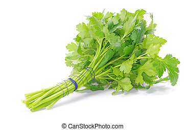 parsley - Bunch of fresh green parsley isolated on white...