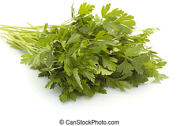 parsley - bunch of fresh parsley