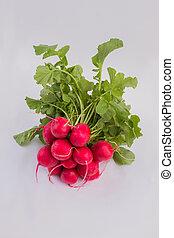 Bunch of fresh radishes.