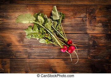 Bunch of fresh radishe