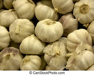 garlic - bunch of garlics, shallow dof