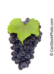 Bunch of grape.