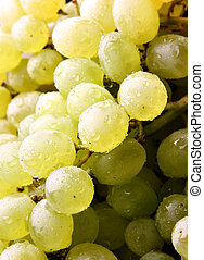 Bunch of grapes, may be used as background