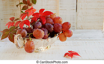 bunch of grapes with vine on white background