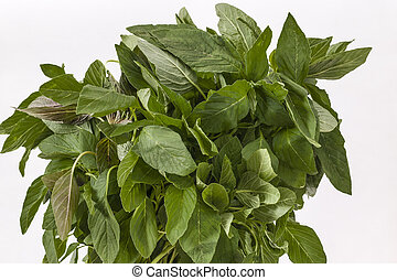 Bunch of Green Amaranth leaves