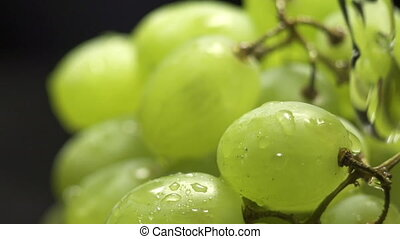 bunch of green grapes on a black background with water...