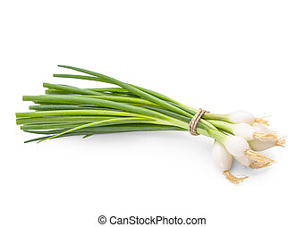 Bunch of green onion on white background