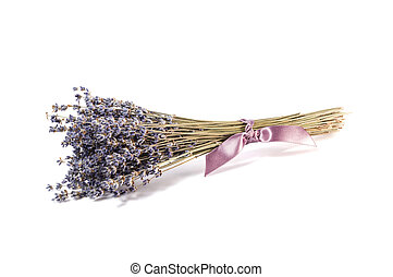 Bunch of lavender flowers on a white
