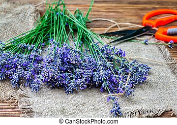 Bunch of lavender flowers on brown background