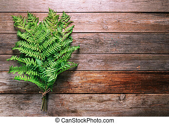 Bunch of leaves fern