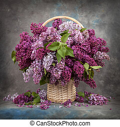 Bunch of lilac on old boards
