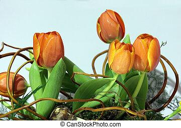 bunch of orange tulips
