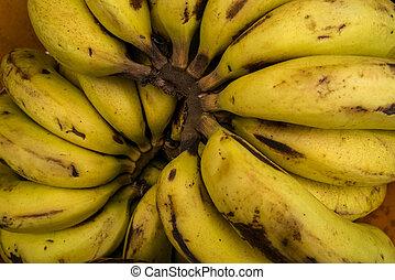 Bunch of organic bananas