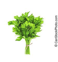 bunch of parsley isolated on white background