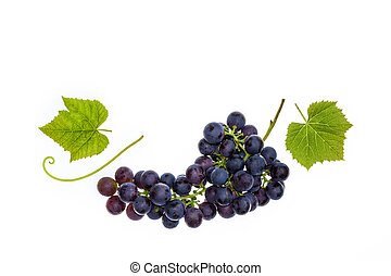 Pinot Noir grapes with leaves isolated on white background -...