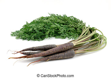 Bunch of purple carrots in isolated white background