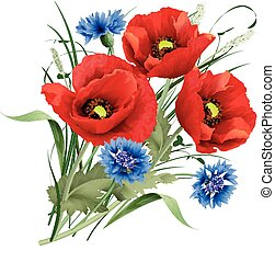 Bunch of red poppy flower, blue cornflakes and hare's-foot...