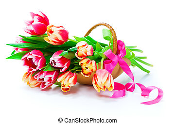 Bunch of red-yellow tulips in a basket on white background,