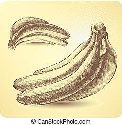 Bunch of ripe bananas, hand-drawing