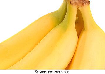 Bunch of ripe freshly picked yellow bananas
