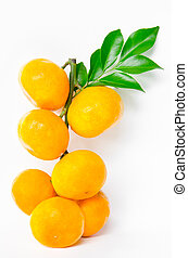 bunch of ripe orange fruit and leaves