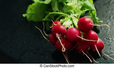 Bunch of ripe radish - From above view of bunch of red ripe...