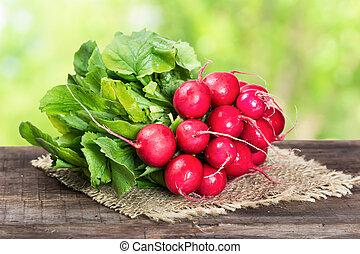 Bunch of ripe radish on wooden background