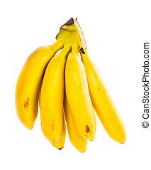Bunch of ripe sweet Baby Banana