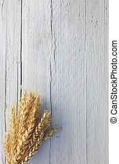 Bunch of ripe wheat on a white wood background