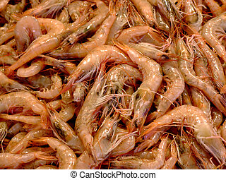 Bunch of shrimps