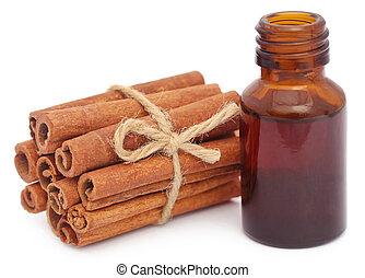 Bunch of some fresh aromatic cinnamon with essential oil