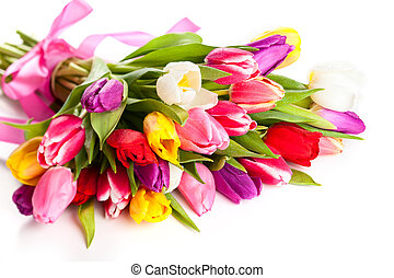 spring tulips - bunch of spring tulips on the white...