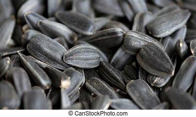 bunch of sunflower seeds macro