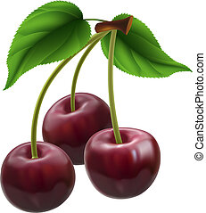 Bunch of three cherries