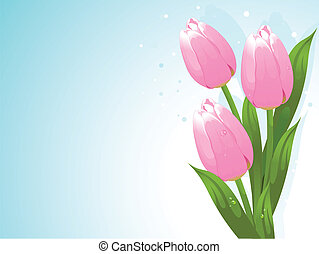 Bunch of tulips - Bunch of pink tulips background
